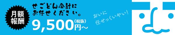 月額報酬9,500円(税抜)